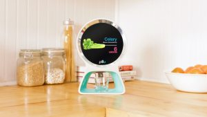 pillo-health-is-a-personal-assistant-that-aims-to-monitor-your-health-and-your-family